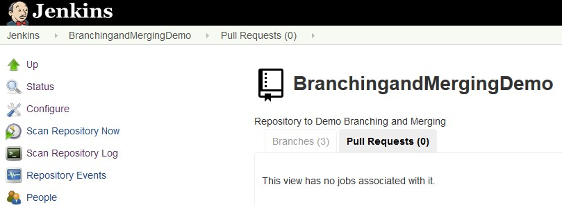 Pull Request View after successful Merge